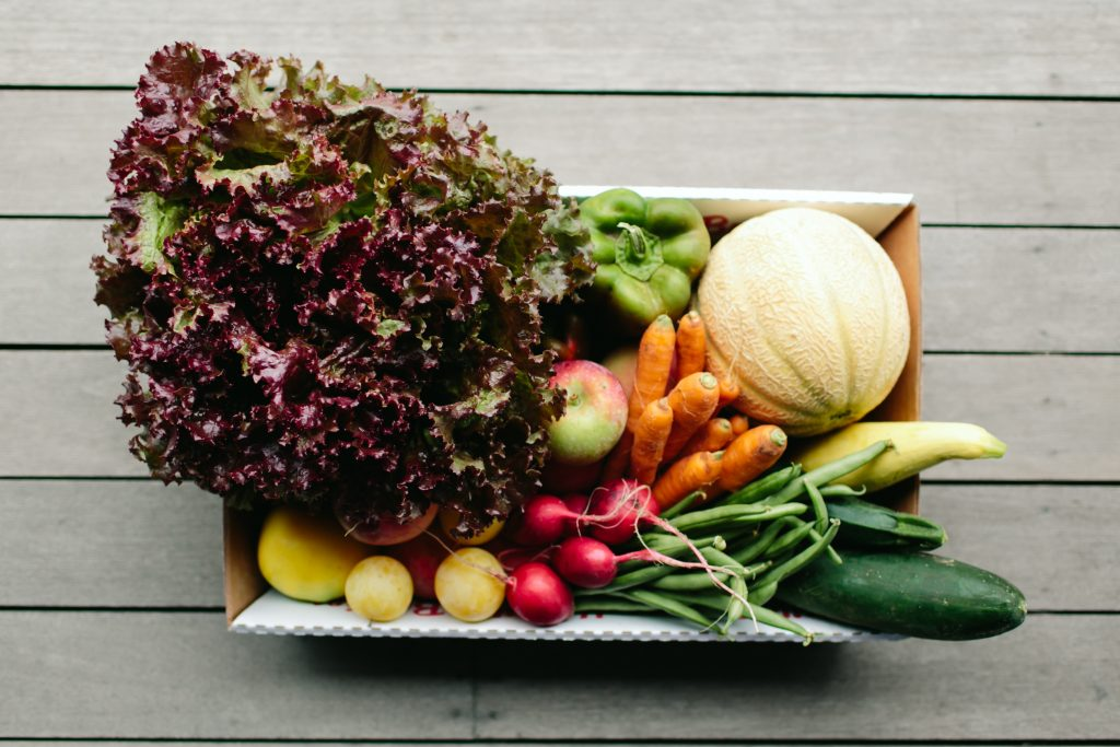 CSA Fruit & Vegetable Farm Shares available